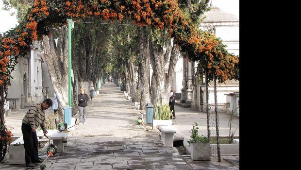 Revalorizan el hist rico cementerio del oeste tucum n a for Cementerio jardin del oeste