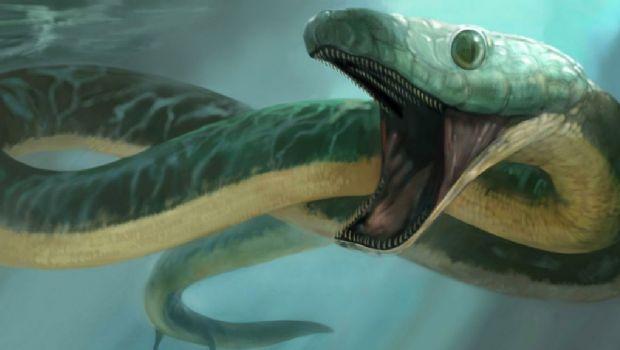 Reportan una invasión de 'serpientes marinas mutantes'