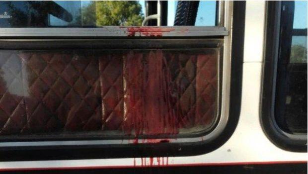 Dos hombres mataron a un chofer de colectivo luego de discutir por el saldo