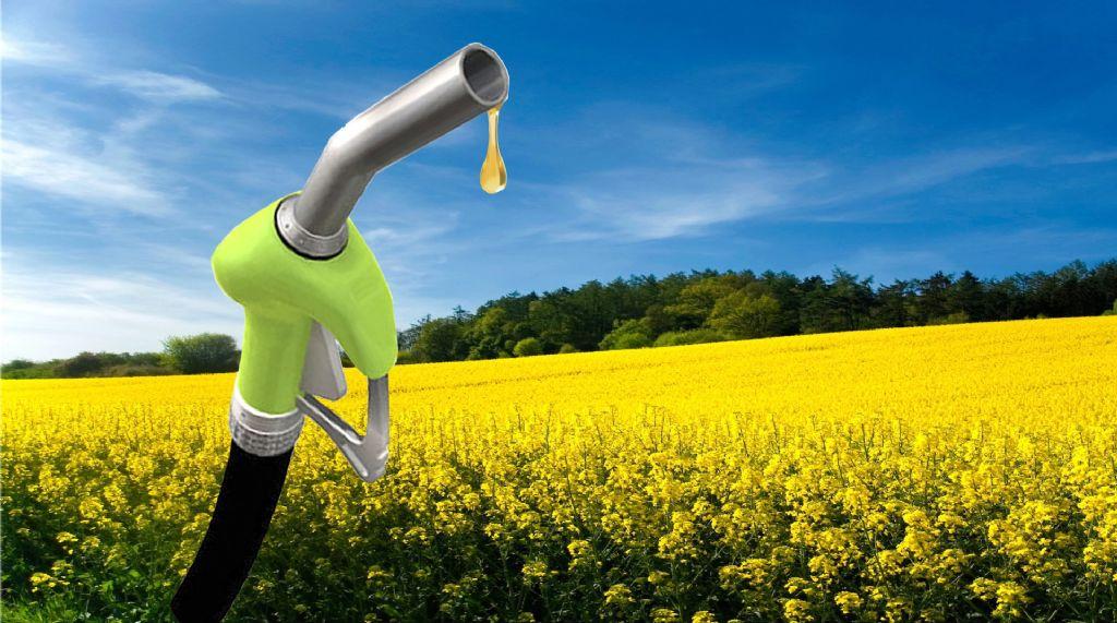 Estados Unidos le impondrá aranceles al biodiésel argentino
