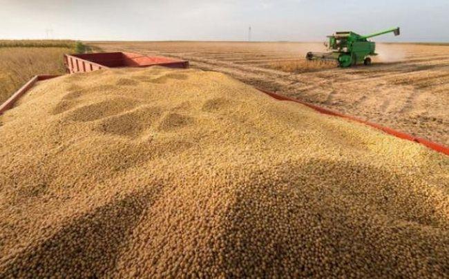 El Gobierno oficializó la suba de las retenciones a la soja